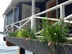 Our herb garden for your use