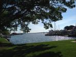 St. Michaels Harbor from Park
