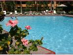 Large , heated pool in our Resort