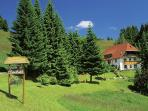 Vacation Apartment in Todtnau - 1 living room / bedroom, max. 3 people (# 8717)