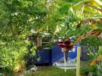 Private Garden Cottage ~ Baby Conch