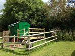 Swift Shepherds Hut
