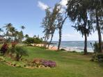 another view of our lawn and beach