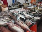 GREAT FRESH FISH MARKET EVERY DAY IN QUARTEIRA 10 MINUTES DRIVE