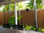 Tropical plants around the patio
