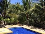 Coconut tree around villa you can try it,