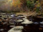 See Creeks & Streams on Your Smoky Mountain Vacation