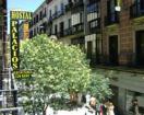 Hostal Palacios-Ribadavia