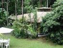 Daintree Deep Forest Lodge
