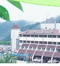 Hotel Deokgu Spa