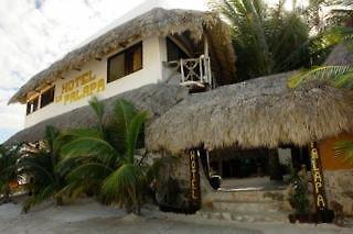 Beachfront Hotel La Palapa