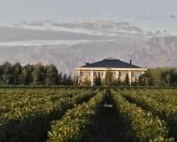 Casa Antucura Wine Hotel