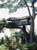 Photo of Munnar Inn