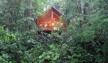 The Canopy Rainforest Treehouses and Wildlife Sanctuary