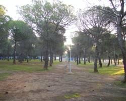 Camping Despenaperros
