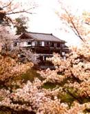 Sakurakadan