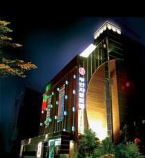DH ルネッサンス ホテル