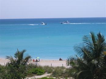Ocean Surf Blue