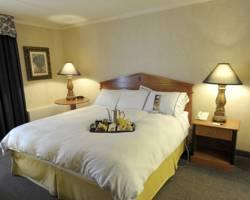 DoubleTree by Hilton Hotel Pittsburgh-Green Tree