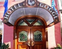 Hotel Goggl