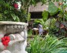 Photo of Lohas Villa Naha