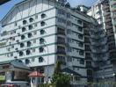 Star Regency Hotel & Apartments