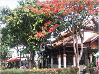 Sao Mai Boutique Villas