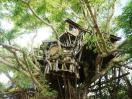 Photo of Pai Treehouse