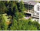 Hotel du Mont-Collon