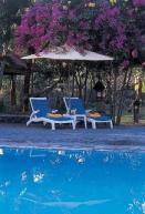 Aneka Lovina Beach Hotel