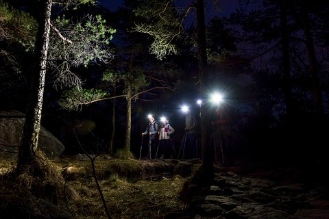 Tripadvisor | Medvednica Nature Park Night Trekking Tour provided ...