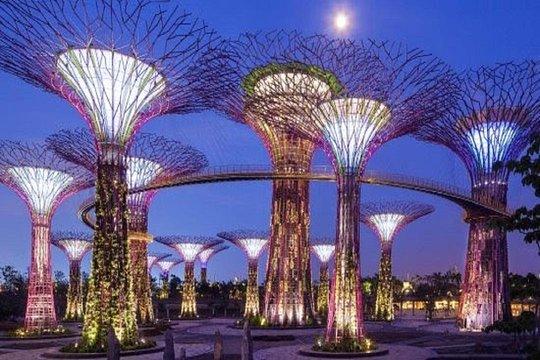 Tripadvisor Gardens By The Bay Admission Ticket Singapore