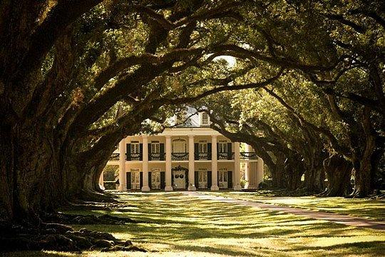 TripAdvisor | Oak Alley Plantation Tour from New Orleans ...