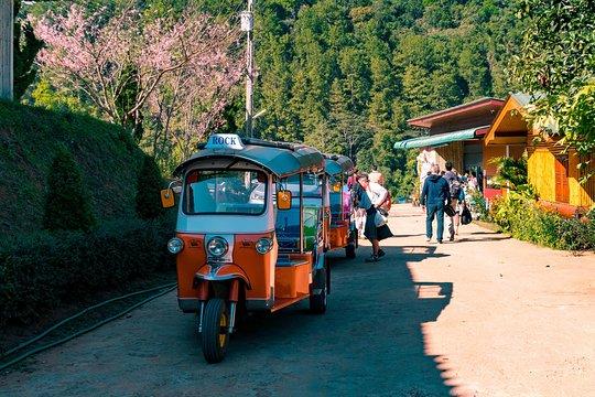 あなた自身のTuk Tukを運転したことがありますか?非常に排他的なトゥクトゥククラブに参加し、旅行が本当の「冒険」だった時代に戻ってみませんか?タイ北部の最高の素晴らしい体験をしてみてください。素晴らしいトレッキングと素晴らしい宿泊施設から離れています。この11日間の旅行は、タイ北部が寺院や農村地帯から山や素晴らしい森林に提供しなければならない絶好の冒険を組み合わせています。すべてのコースは、あなた自身のTuk Tukの輪の後ろにあります。