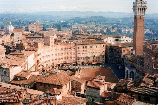 Siena E San Gimignano Ottima Esperienza Enologica Tour Condiviso Da Greve In Chianti