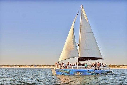 Sunset Dolphin Catamaran Cruise