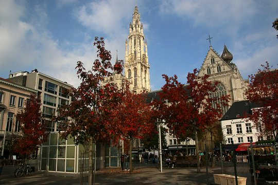 Sluts in Antwerp