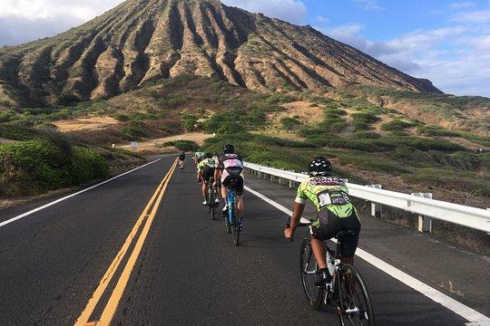 Speed dating oahu hawaii
