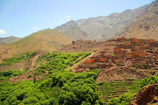 Day Out With A Berber To High Atlas Mountains
