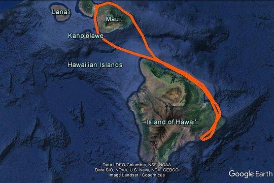 Big Island Volcano National Park -Private- Halbtages-Entdeckung: Krater &  Klippen!