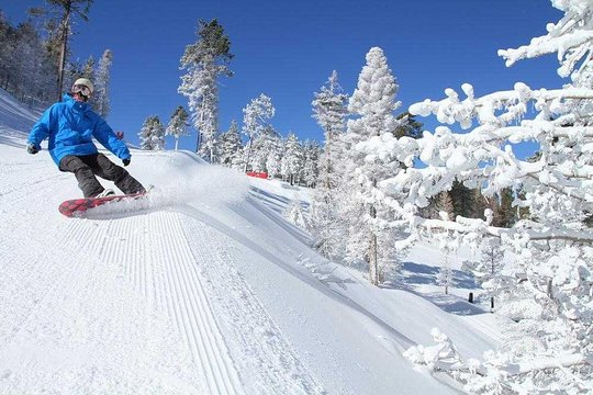 San Diego To Big Bear >> Snow Bus Xpress Ski Service To Big Bear Mountain