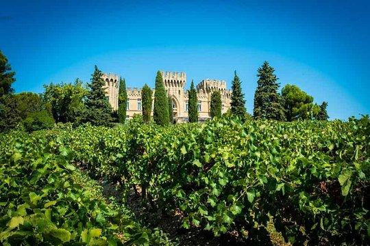Tour del vino di Chateauneuf du Pape