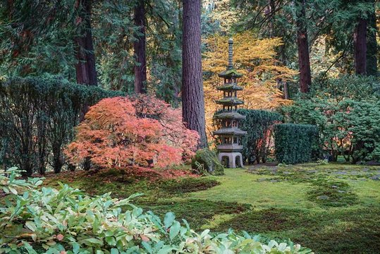 General admission portland japanese garden provided by - Portland japanese garden admission ...