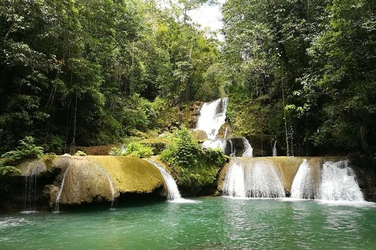 Image result for YS Falls, Pelican and Hummingbird Sanctuary