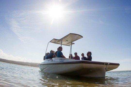 cheap for discount 61616 47496 Excursão em barco solar ecológico pelo Algarve em Ria Formosa