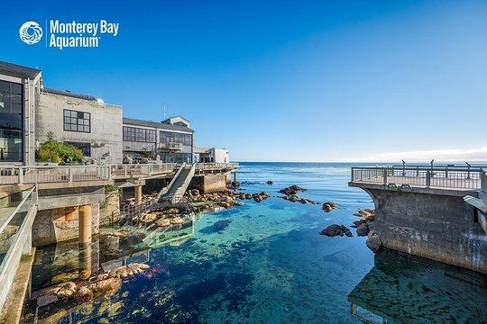 Monterey Bay dating