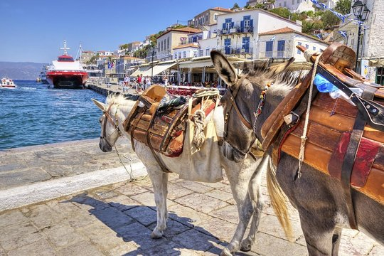 day trips to hydra from athens