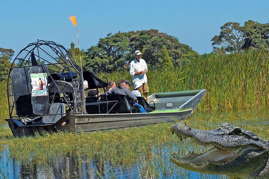 One Hour Airboat Tour