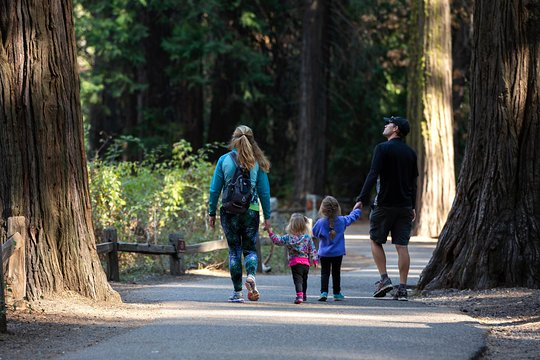 Tripadvisor | Yosemite National Park and Giant Sequoias Day Trip from San Francisco provided by Extranomical Tours | California
