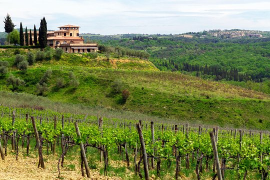 Italian Florence: Small Group Tuscany Day Trip From Florence